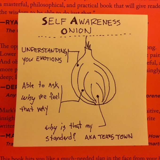 self awareness onion, mark manson